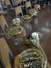 Horn x 4 .jpg